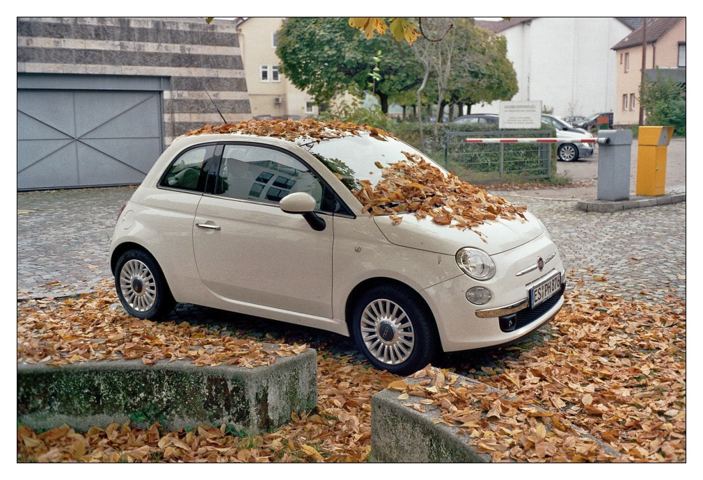 Autumn Car wuth Revue 400SE